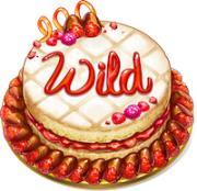 wild baker treat