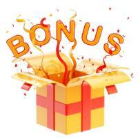 Bonus im Online Casino